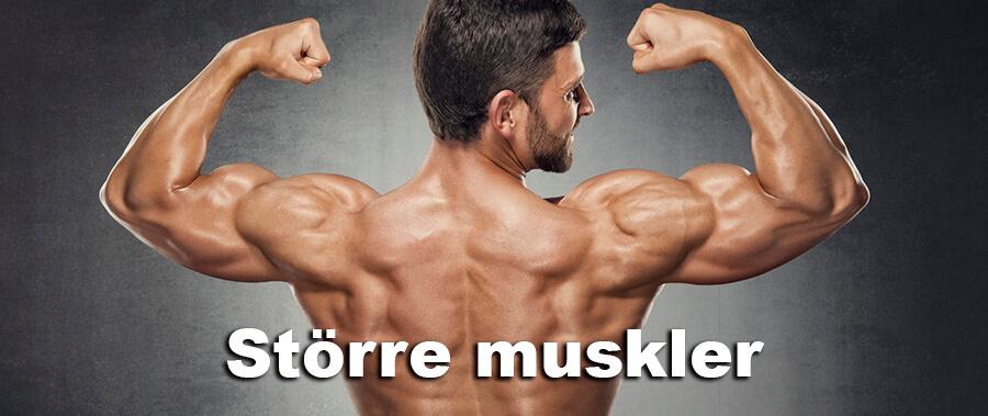 Större muskler - Bygg muskler med MM Sports