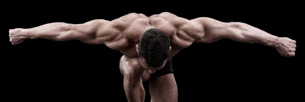 Muskler_armar_pose